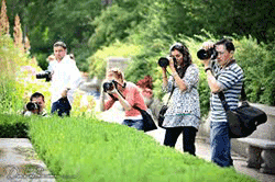 10-reasons-to-attend-a-photography-workshop-or-photo-walk